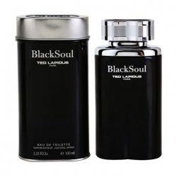 TED LAPIDUS BLACK SOUL MASCULINO EAU DE TOILETTE 30ML (Embalagem com pequena avaria)