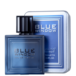 LINN YOUNG BLUE WINDOW MASCULINO EAU DE TOILETTE 100ML