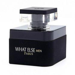 WHAT ELSE MEN EAU DE PARFUM 100ML